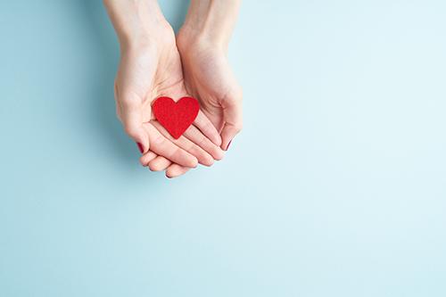 Lecos Spenden Herzenssache